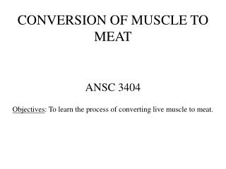 CONVERSION OF MUSCLE TO MEAT