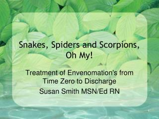 Snakes, Spiders and Scorpions, Oh My!