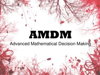 Advanced Mathematical Decision Making