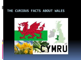 The curious facts about Wales