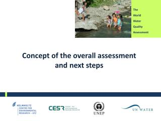 Concept  of the overall assessment  and  next steps