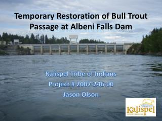 Temporary Restoration of Bull Trout Passage at Albeni Falls Dam