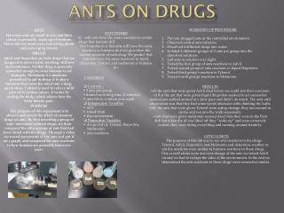 Ants on Drugs