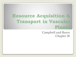 Resource Acquisition & Transport in Vascular Plants