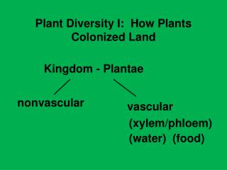 Plant Diversity I:  How Plants Colonized Land