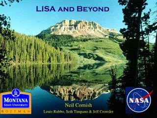 LISA and Beyond