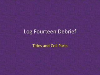 Log Fourteen Debrief