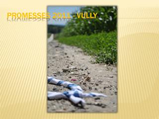 Promesses 2011 -  vully