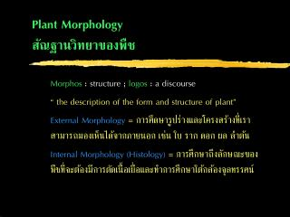 Plant  Morphology ?????????????????