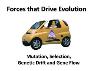Forces that Drive Evolution