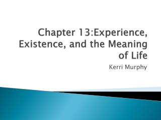 Chapter 13:Experience, Existence, and the Meaning of Life
