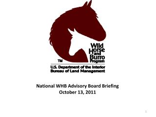 National WHB Advisory Board Briefing October 13, 2011
