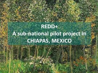 REDD+  A sub-national pilot project in CHIAPAS, MEXICO