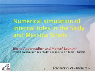 Numerical  simulation of  internal tides  in the  Sicily  and  Messina Straits