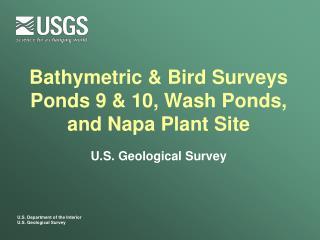 Bathymetric & Bird Surveys Ponds 9 & 10, Wash Ponds, and Napa Plant Site