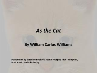 As the Cat