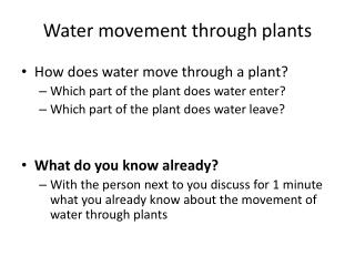 Water movement through plants