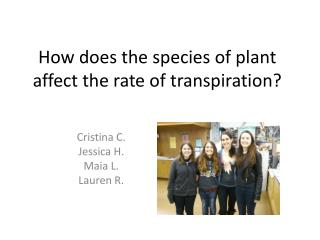 How does the species of plant affect the rate of transpiration?