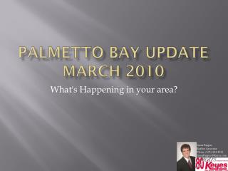 Palmetto Bay  Update March 2010
