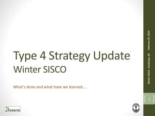 Type 4 Strategy Update Winter SISCO