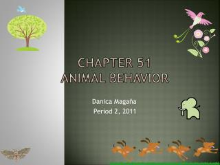 Chapter 51 Animal Behavior
