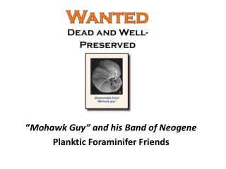 """"""" Mohawk Guy"""" and his Band of Neogene Planktic Foraminifer Friends"""