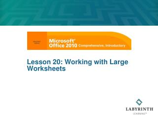 Lesson 20: Working with Large Worksheets