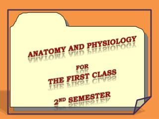 Anatomy and Physiology  For  The First Class  2 nd  Semester