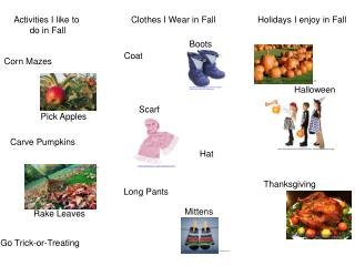 Clothes I Wear in Fall
