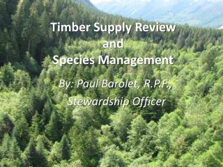 Timber Supply Review and Species Management