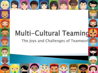 Multi-Cultural Teaming