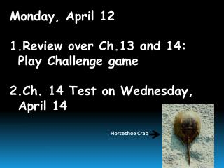 Monday, April 12 Review over Ch.13 and 14:  Play Challenge game Ch. 14 Test on Wednesday, April 14