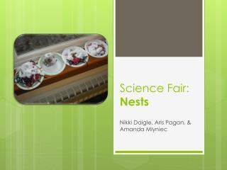 Science Fair: Nests