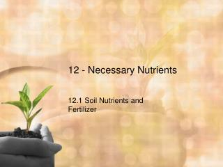 12 - Necessary Nutrients