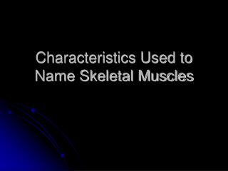Characteristics Used to Name Skeletal Muscles