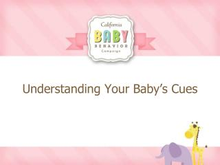 Understanding Your Baby's Cues