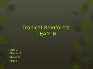 Tropical  Rainforest TEAM B