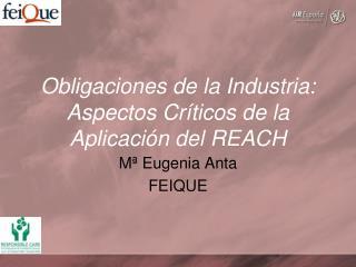 Obligaciones de la Industria: Aspectos Críticos de la Aplicación del REACH