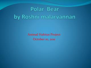 Polar  Bear by  R oshni malarvannan