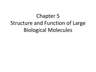 Chapter 5 Structure and Function of Large Biological Molecules