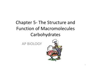 Chapter 5- The Structure and Function of Macromolecules Carbohydrates