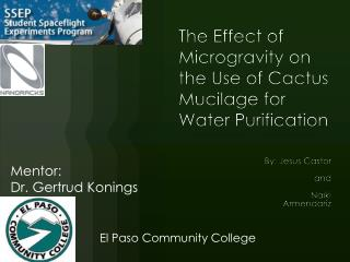 The Effect  of  Microgravity on the  Use of Cactus  Mucilage for Water Purification