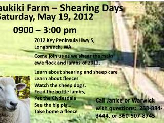 Kaukiki Farm – Shearing Days
