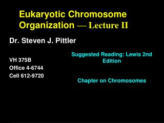 Eukaryotic Chromosome Organization  — Lecture II