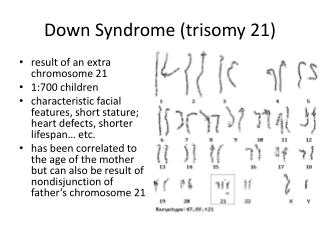 Down Syndrome ( trisomy  21)