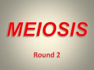 MEIOSIS Round 2