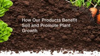 How Our Products Benefit Soil and Promote Plant Growth