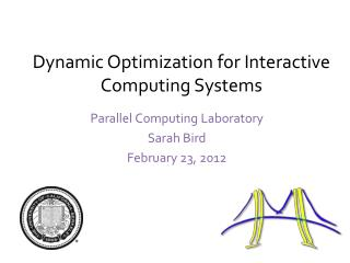 Dynamic Optimization for  Interactive Computing Systems