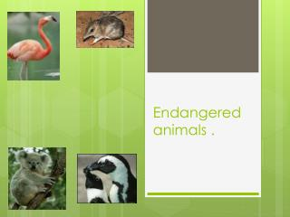Endangered animals .