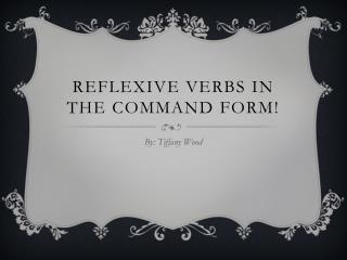Reflexive Verbs in the command form!